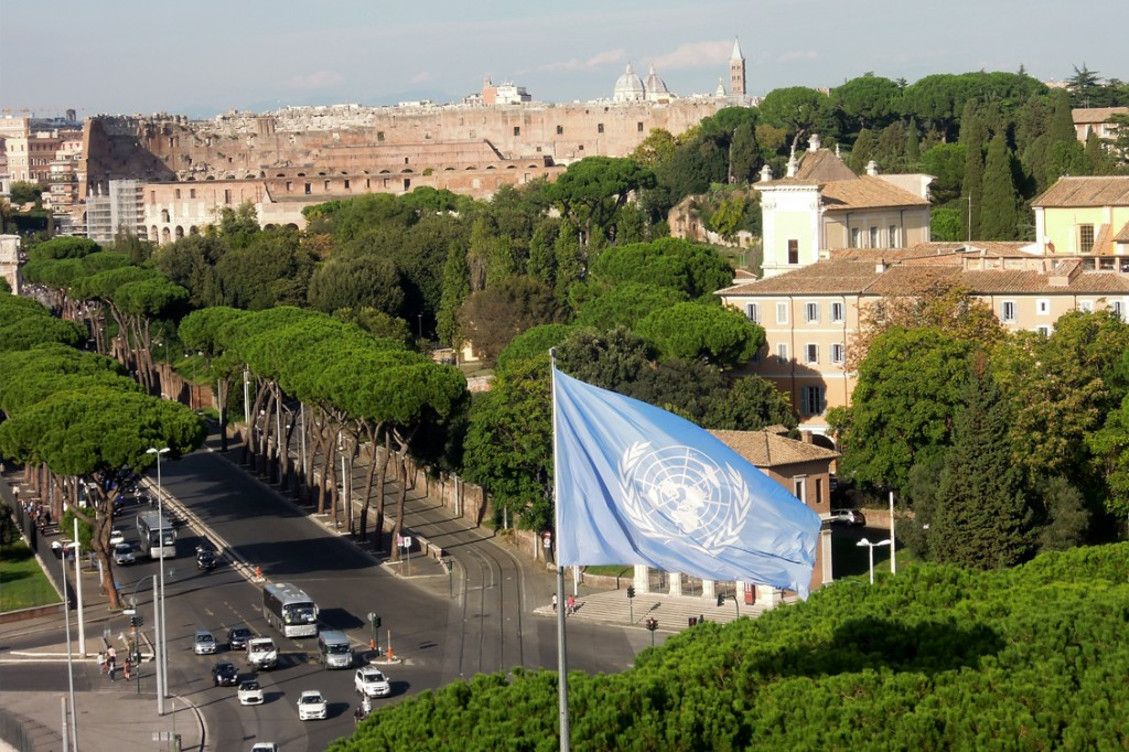 UN Flag against the Roman Colosseo